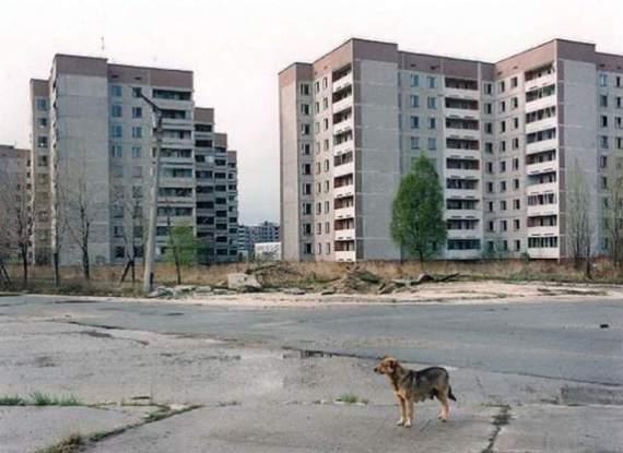 Луганск как зона отчуждения. ФОТО