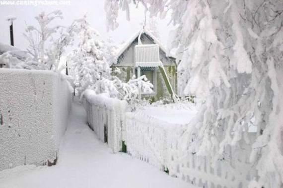 С морозами и метелями: в Украину идет настоящая снежная зима