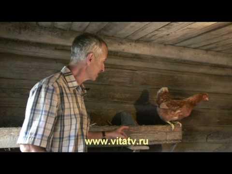 Смех на минут двадцать, рецепт от российского доктора( ВИДЕО )