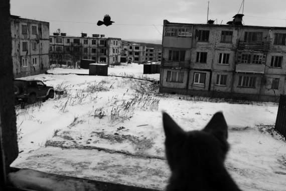 «Украинский Магадан» или «Золотая жилка Захарченко и Пасечника»