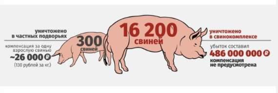 Почему в Луганске растет конкуренция в сфере мясоколбасной продукции?