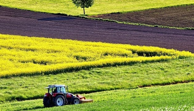 Уряд хоче передати півмільйона гектарів землі у власність фермерів