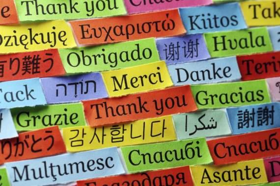 Российская журналистка опозорилась, доказывая испанцу, что в РФ знают иностранные языки. ВИДЕО