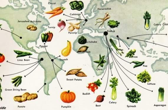 Історія кожного овоча на вашому столі