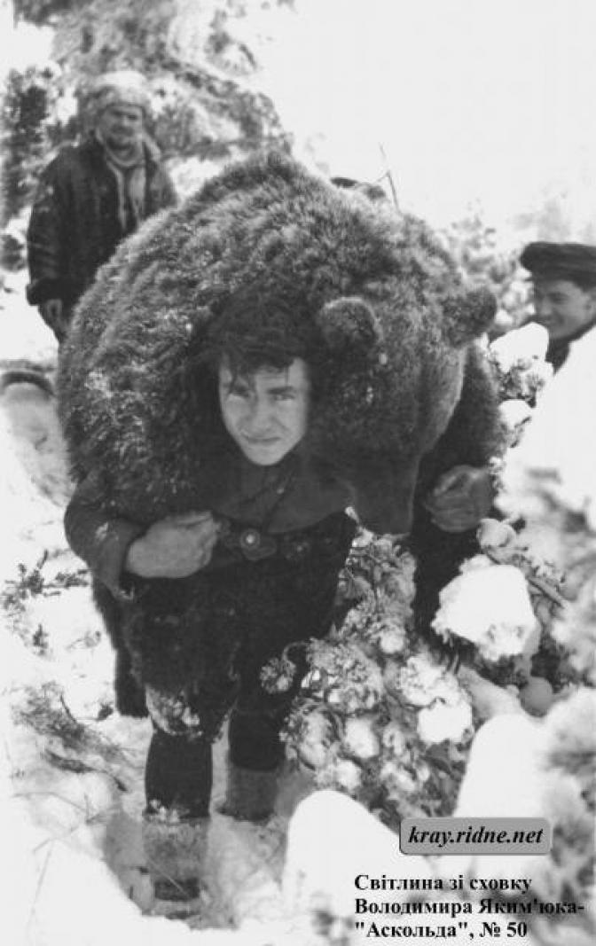 Зворушлива історія про дружбу повстанця УПА з ведмедем