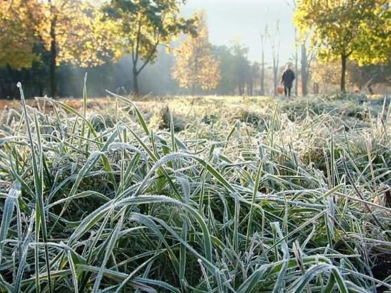 В воскресение и понедельник в Украине ожидаются заморозки