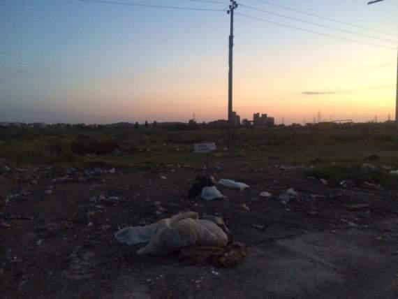 Оккупанты превратили в помойку ранее процветающий крымский город. ФОТО