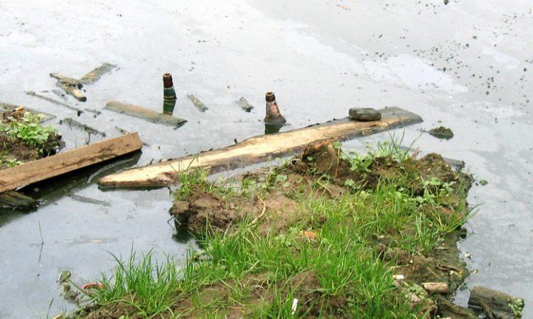 Немытая россия: в Волгограде фекалии затопили дома и отравляют пруд с черепахами (видео)