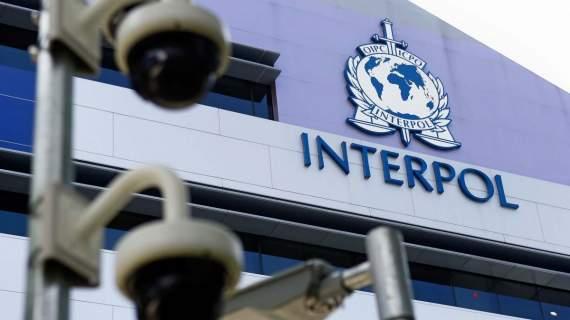 Избран новый глава Интерпола