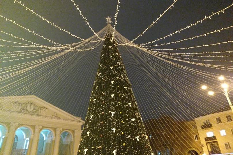 """Дерево і """"намет"""" за 2,8 млн грн. У Полтаві встановили найдорожчу ялинку"""