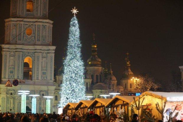 Головна різдвяна красуня України підкорила Європу: ялинку визнали найкращою