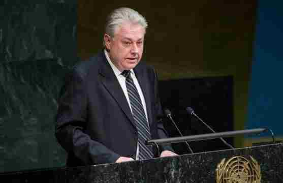 """Єльченко розповів, як Московія намагалася """"поховати"""" кримську резолюцію ООН"""