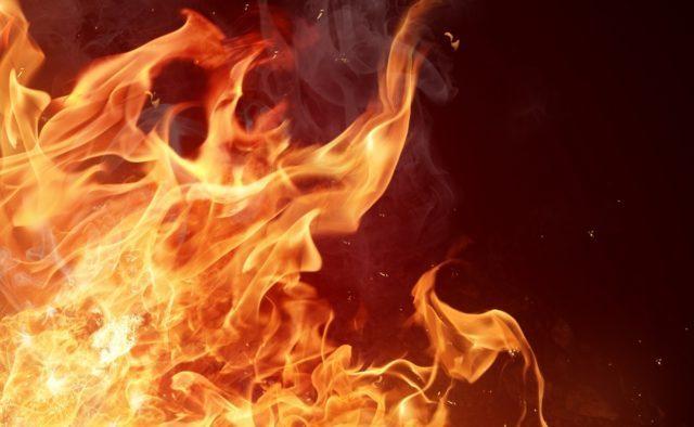Масштабный пожар вспыхнул под Львовом: все превращается в ад, ужасные кадры