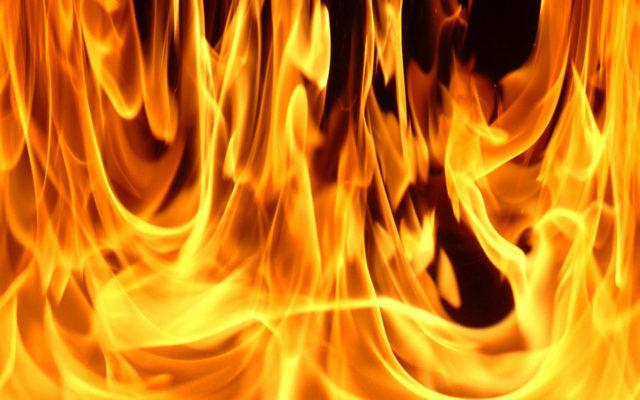 «ДНР» охватил пожар, под угрозой дети: что происходит, подробности
