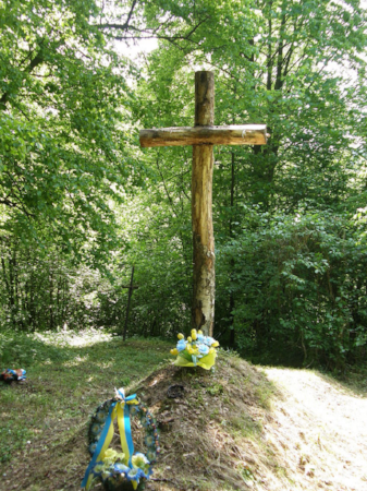 Трагедия села Березка.