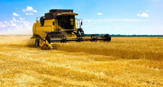 Украина оказалась в тройке лидеров по экспорту агропродукции в страны ЕС