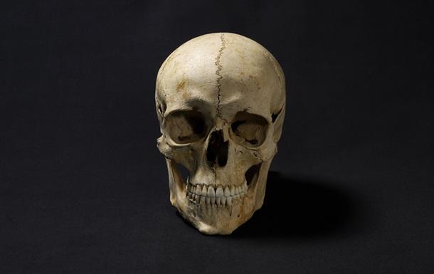 Ученого поразило состояние зубов человека, который жил 1300 лет назад: фото