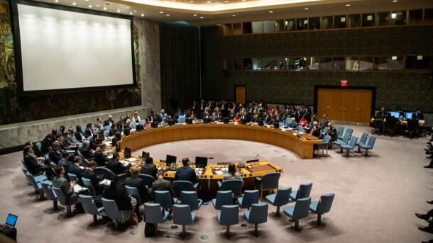 Вопрос украинского языка в Совбезе ООН: причины отказа от рассмотрения