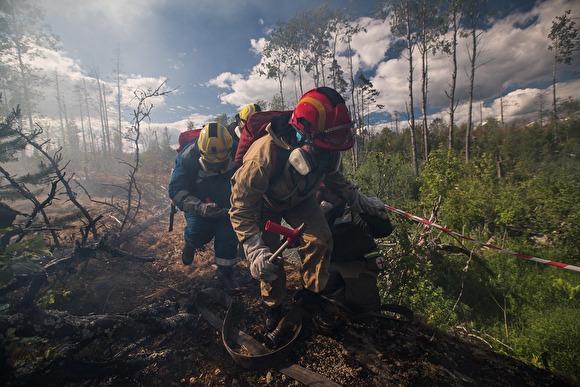 Эксперты предсказали глобальную экологическую катастрофу из-за лесных пожаров в Сибири