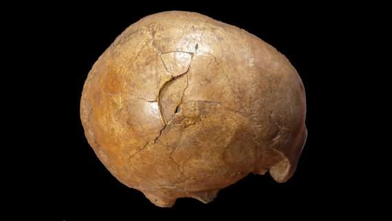 Найдены следы древнейшего убийства в истории человечества