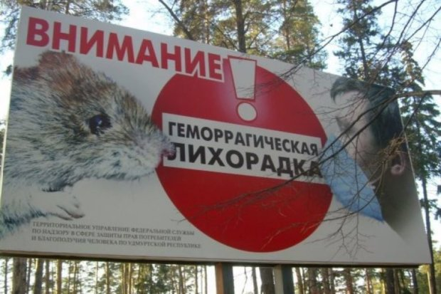 Россия срочно закрывает границы, в стране эпидемия: есть погибшие, первые подробности