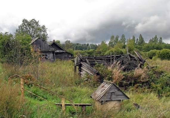 Деградация России: в правительстве заявили о «катастрофическом вымирании нации»