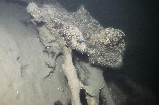 Ученые нашли лес на дне моря: «обнаружили следы людей»