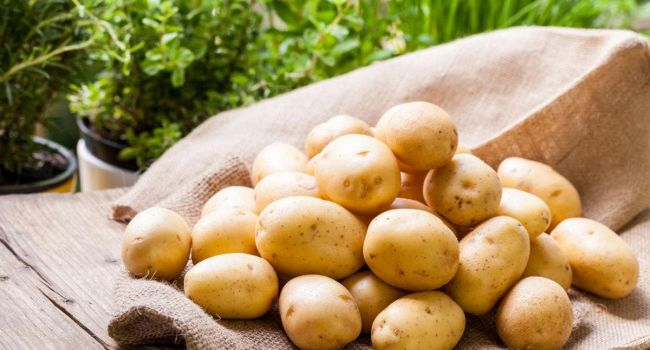 Что можно сделать с водой, в которой варилась картошка
