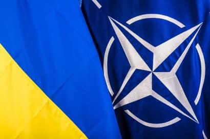 Слуга Народа против вступления Украины в НАТО!