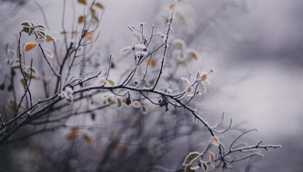 Стабильное похолодание: синоптик предупредил украинцев о приближении морозов
