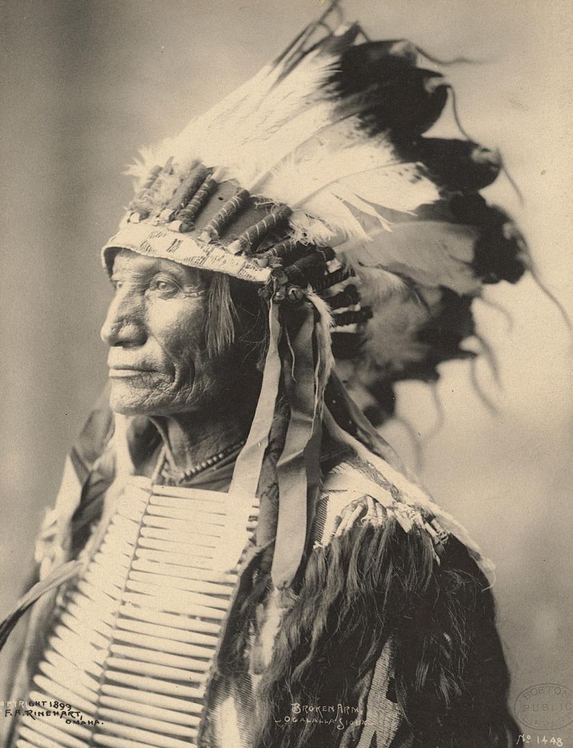 Кто ты — волк орел, или выдра: интересный гороскоп индейцев