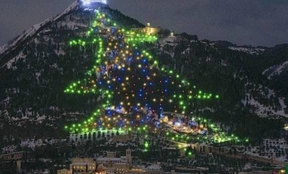 В Италии появилась самая большая елка в мире
