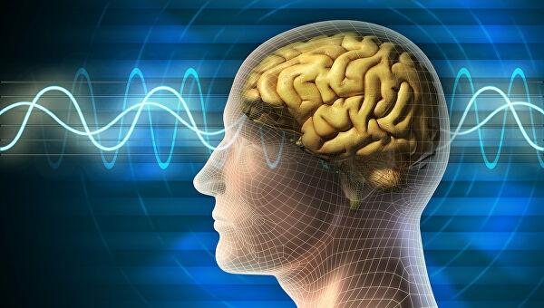 Ученые назвали главную угрозу для нормальной работы человеческого мозга