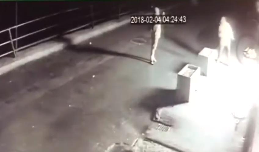 СБУ показала, як польські ультраправі підпалювали угорський центр в Ужгороді: опубліковано відео