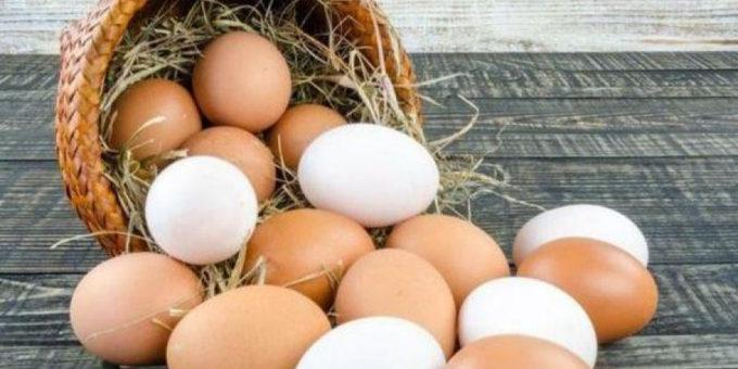В Израиль доставлены 7 миллионов яиц из Украины