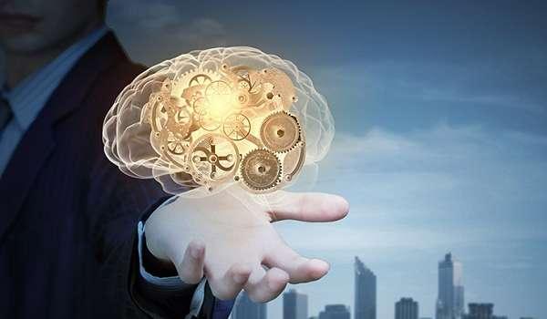 Стало известно, как тренировка мозга способствует креативному мышлению