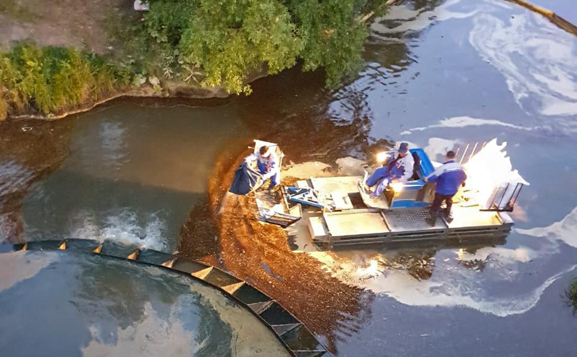 Экологическая катастрофа в Москве: пятно нефтепродуктов в Химкинском водохранилище стремительно растет