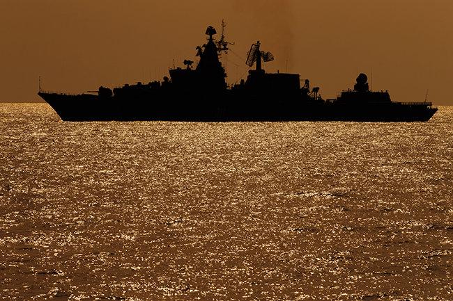 В Сирії РФ використовує загони дресированих дельфінів: експерт назвав мету