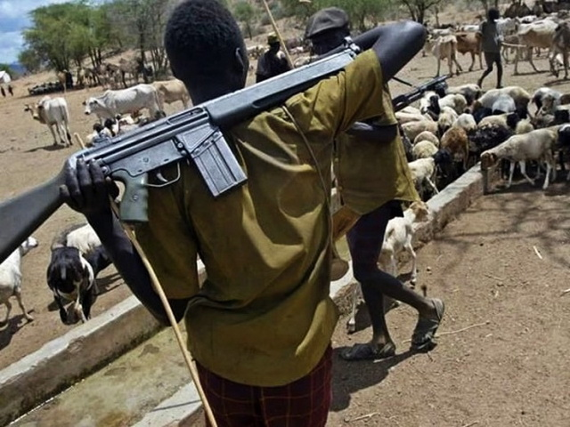 Вооруженная атака на деревни в Нигерии: подробности и данные о жертвах