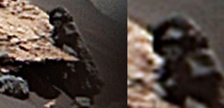 "За Curiosity наблюдал ""пришелец"": фотофакт"