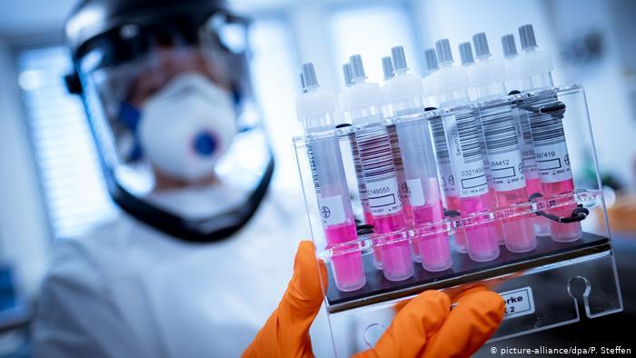 Вирусолог опубликовала доказательства происхождения коронавируса: подробности
