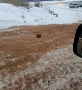 В Иркутской области РФ дорогу от гололеда посыпали песком с… человеческими костями (фото)