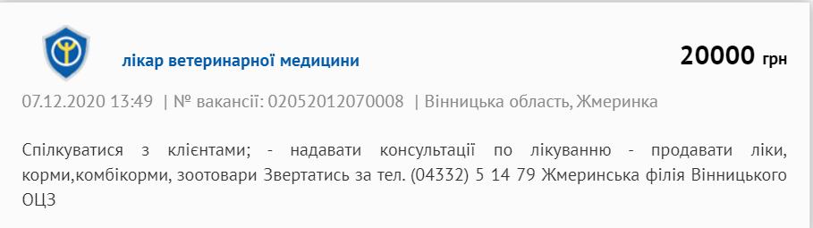 """""""Буде катастрофа!"""" Польща переманює лікарів з України в розпал COVID-19: залишився єдиний вихід"""
