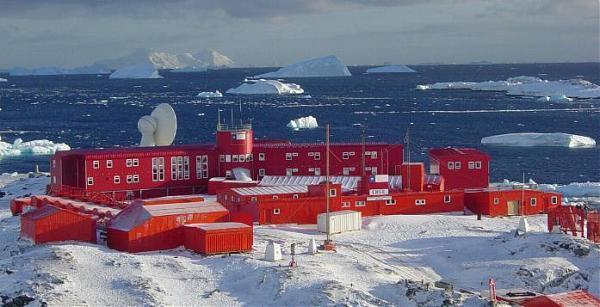 Коронавирус обнаружили на Антарктиде: заболели более 30 человек