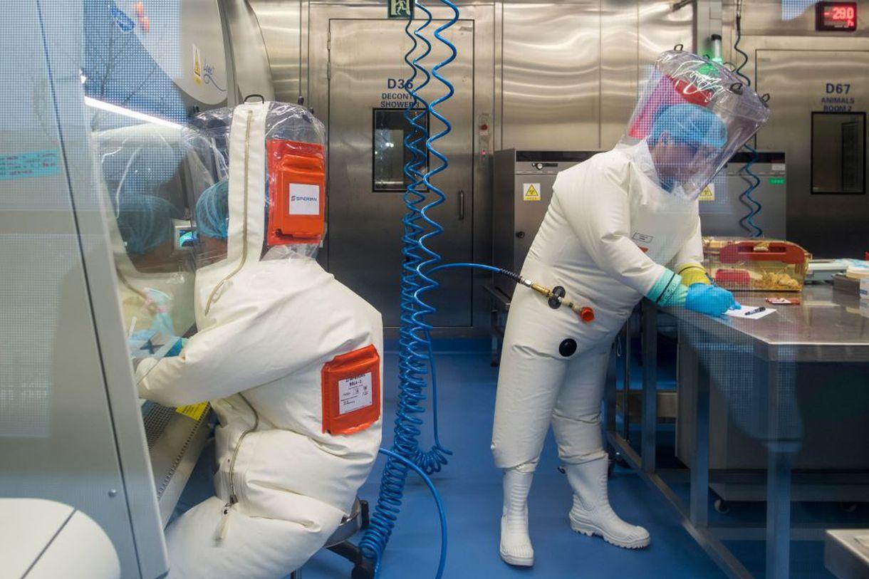 В США назвали достоверную версию возникновения коронавируса: что известно