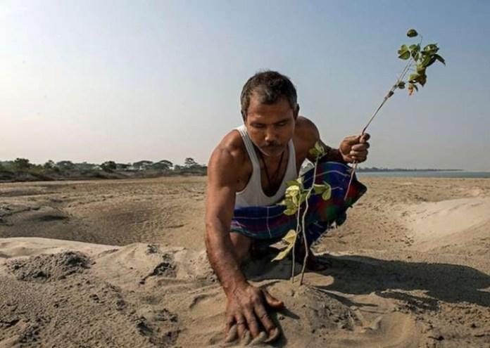 Человек, который превратил пустыню в лес, посадив за 40 лет 1,5 миллиона деревьев