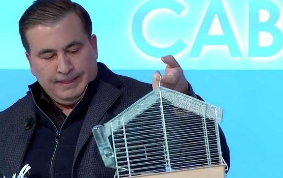 Саакашвили принес крысу на эфир, грызун заснул
