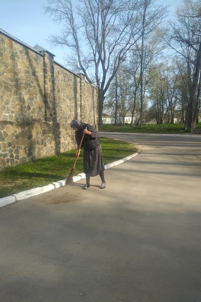 Підірвала мережу : Савченко показала, як доїть корову і підмітає вулицю. фото