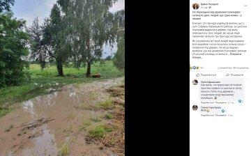 Молния в один миг лишила жизни двух человек: детали и фото с места трагедии под Черкассами