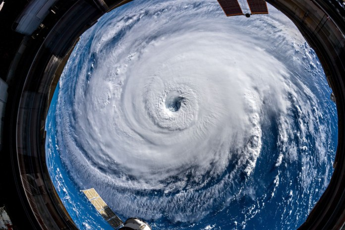 Более 13 тысяч ученых заявили о чрезвычайной чрезвычайной климатической ситуации